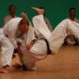 Nabór do szkoły Shorin-Ryu Karate w Pińczowie