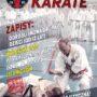 Okinawa Karate - popraw swoja sprawność